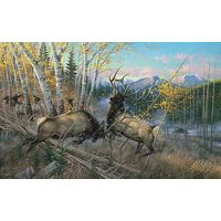 Battling Bulls - Elk Art Prints