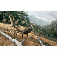 A Challenge to All-Elk Art Print by Ron Van Gilder