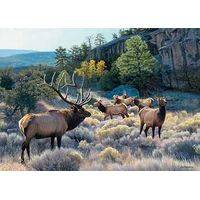Always Alert-Elk Studio Canvas Art by Jim Kasper