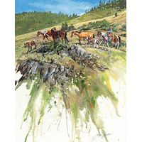 Limited Edition Print A Fine Day - Horses